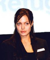 Are some angelina jolie bisexual 2003 sorry