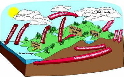 water cycle academic kids rh academickids com water cycle clipart black and white water cycle clipart